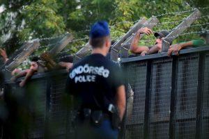 Policías en la frontera de Hungría y Serbia. Foto:AFP. Imagen Por: