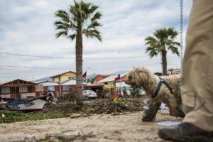 Para hoy, continuará de visita en otras regiones Foto:AFP. Imagen Por: