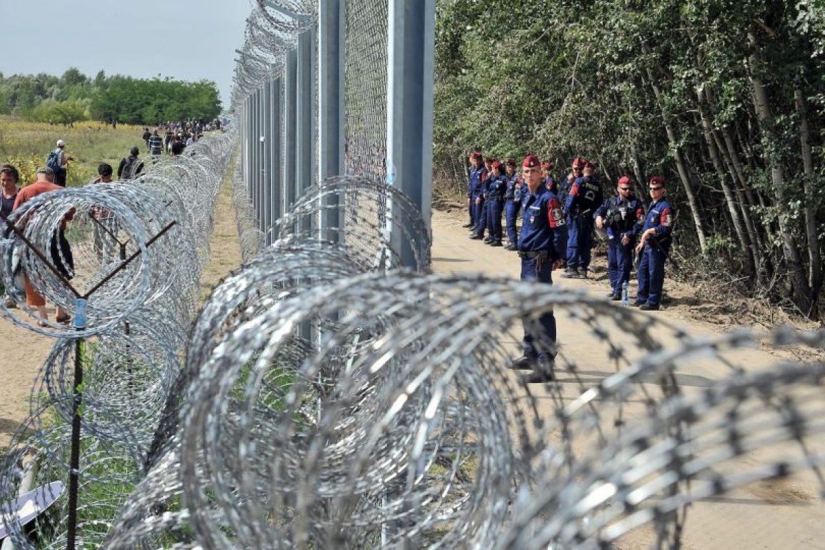Policías vigilan la frontera entre Hungría y Serbia. Foto:AFP. Imagen Por: