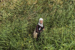 Refugiada en un campo cerca de la frontera de Hungría y Serbia. Foto:AFP. Imagen Por: