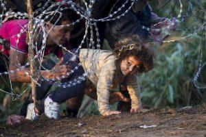 Antes de cerrar su frontera con Serbia, el gobierno húngaro ordenó construir una valla para impedirle el paso a los migrantes. Foto:AP. Imagen Por: