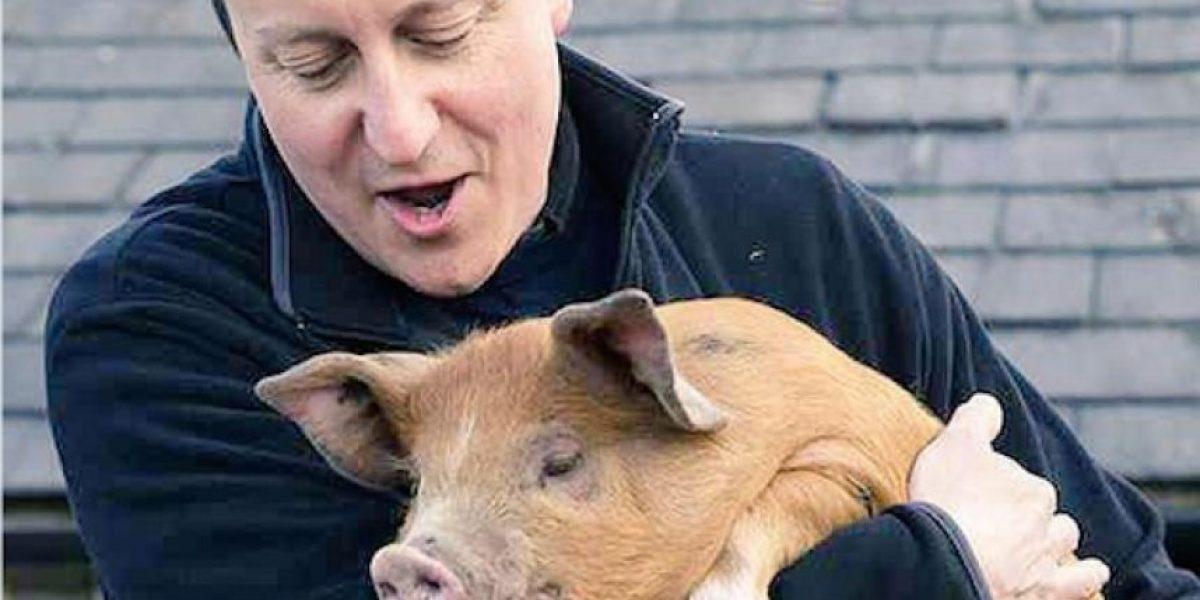 Escándalo en Reino Unido por libro que revela los tiempos universitarios de David Cameron