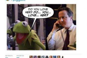 Hay otros que relacionan a Cameron con la separación de la Rana René y Peggy Foto:Twitter.com. Imagen Por: