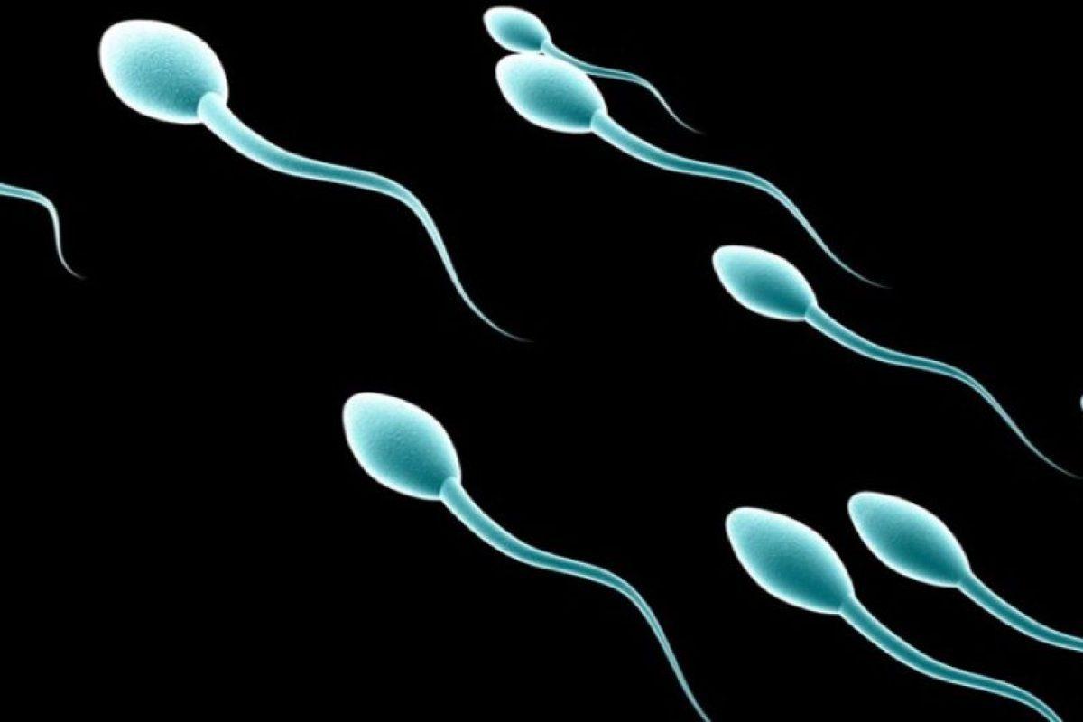 Donar esperma: Un hospital chino recompensará a todos los donadores regulares de esperma con la cantidad suficiente de dinero para comprar un modelo de iPhone 6s Foto:Wikicommons. Imagen Por: