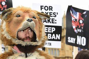 La organización Personas por la Ética en el Trato de los Animales, es quien presentó la demanda en contra del fotógrafo David J. Slater. Foto:Getty Images. Imagen Por: