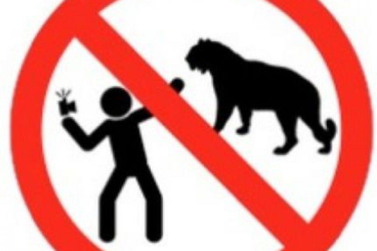No tomarse selfies con animales. Foto:vía mvd.ru. Imagen Por: