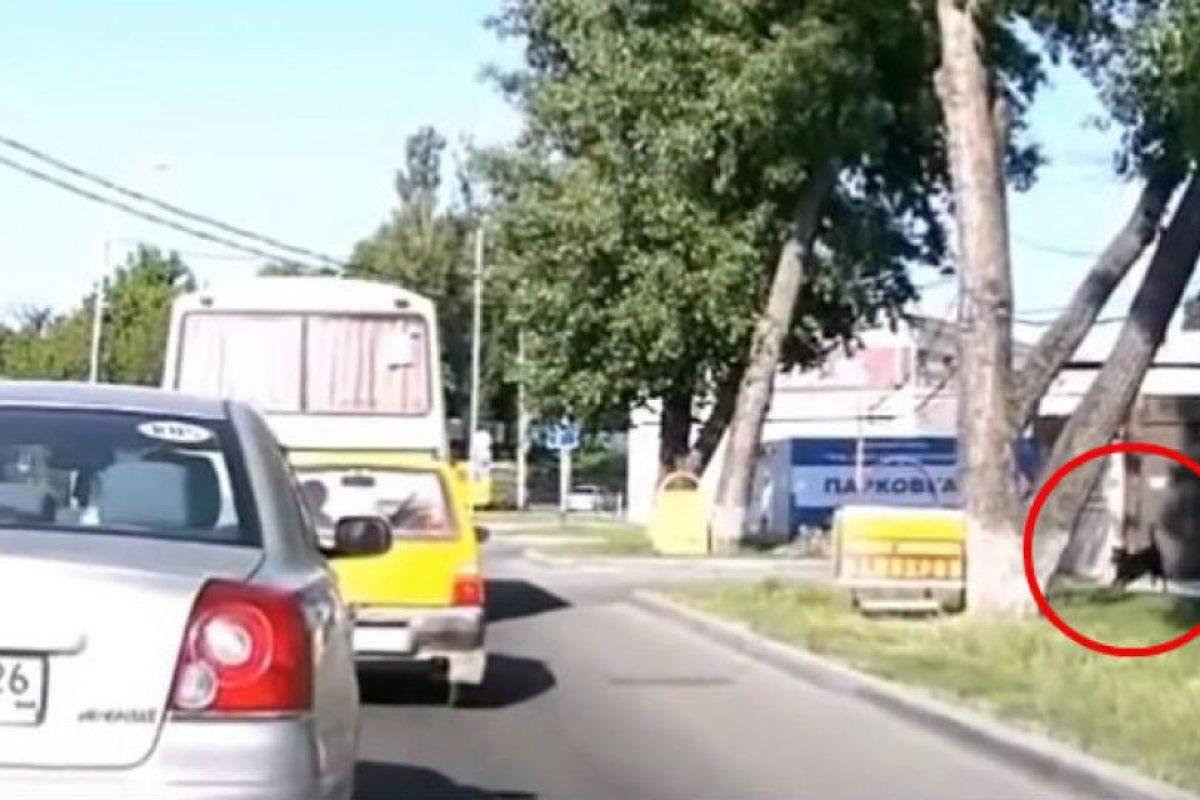 Foto:Vía Youtube. Imagen Por: