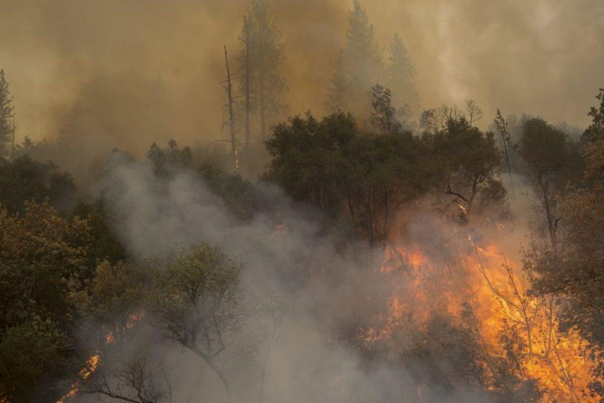 La Guardia civil detuvo al presunto culpable de 10 incendios. Foto:Getty Images. Imagen Por: