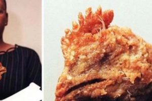 La cabeza del pobre pollo. Foto:vía Imgur. Imagen Por: