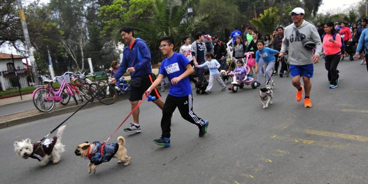 Quinta Normal celebra centenario con entretenida perrotón