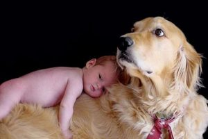 Foto:Pinterest. Imagen Por: