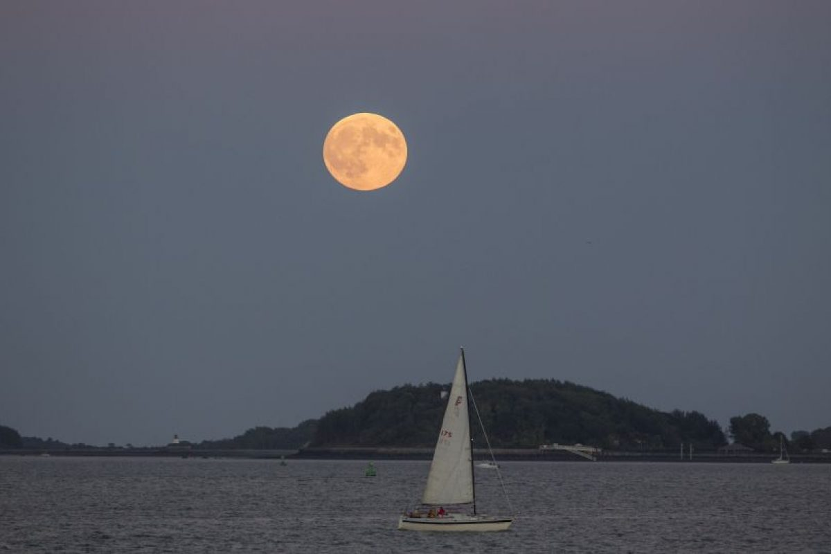 En Boston Foto:AFP. Imagen Por: