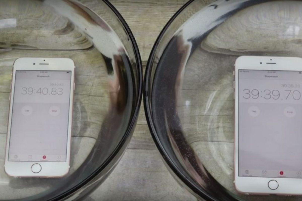 iPhone 6s y iPhone 6s Plus resisten al agua. Foto:vía Zach Straley / YouTube. Imagen Por: