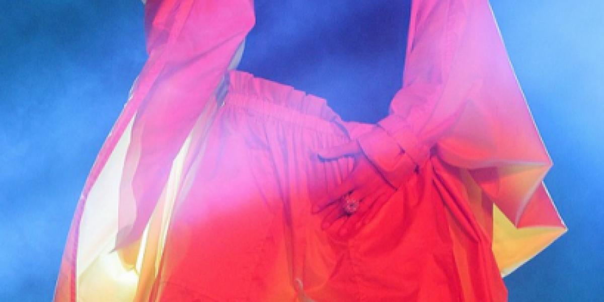 En completo hermetismo: Rihanna llegó esta mañana a Chile