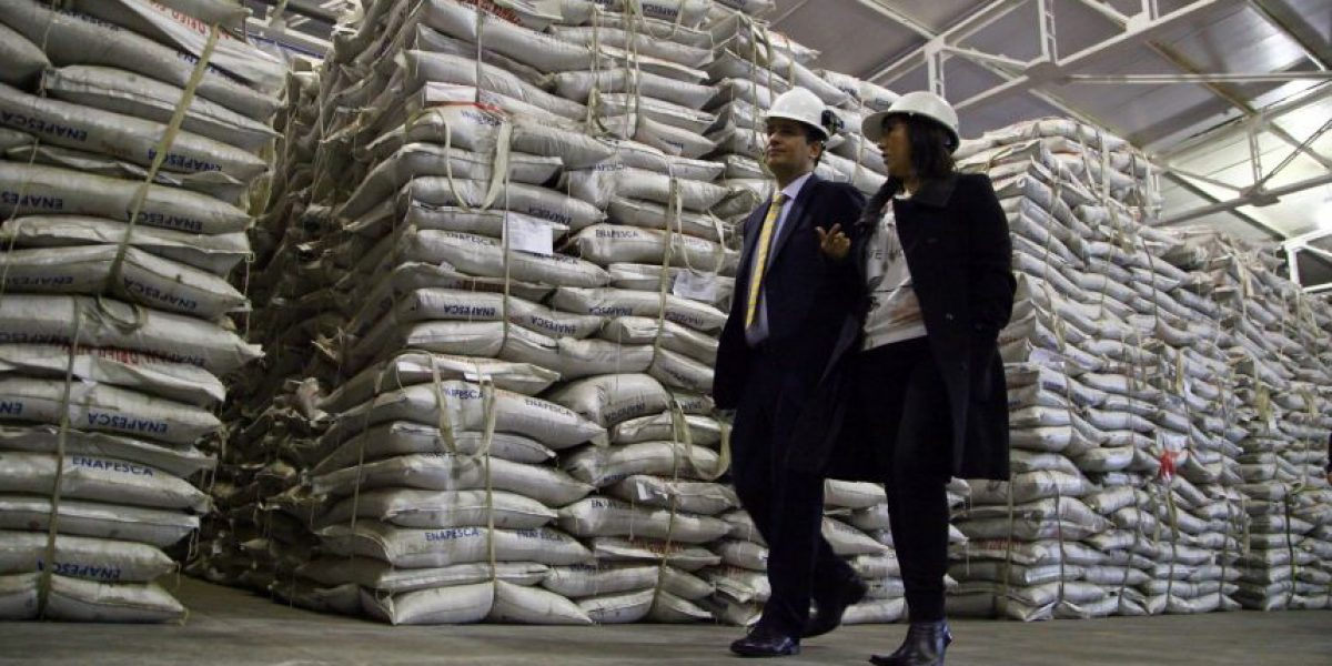 Sernapesca concretó la incautación de harina de pescado ilegal más grande de su historia