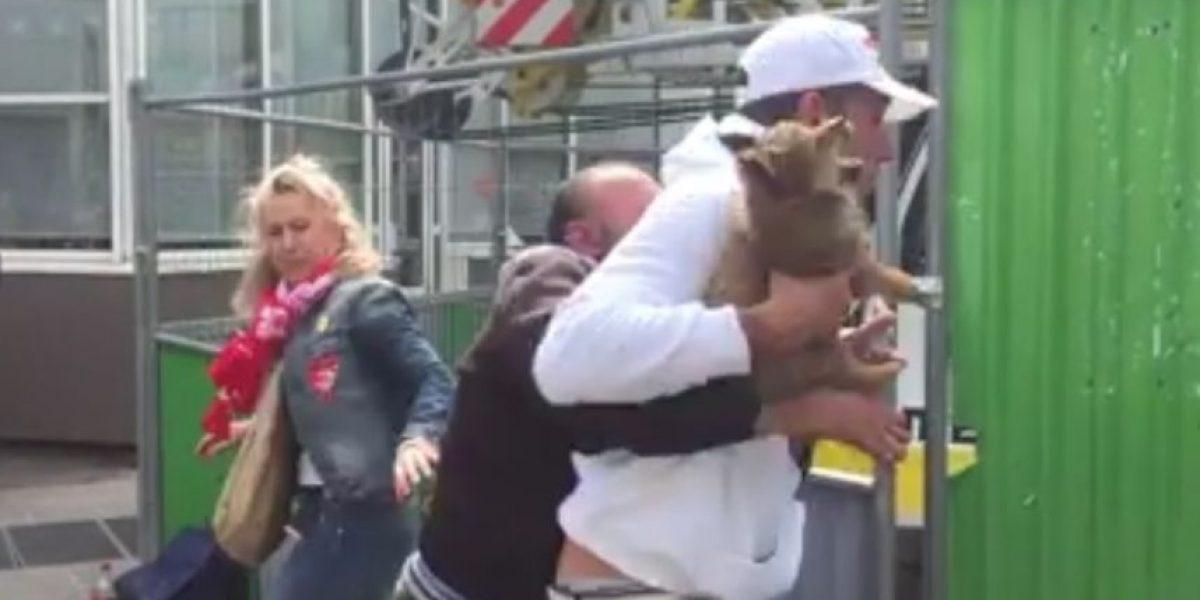 Rescate de tierno cachorro en calles de París desató polémica en la red