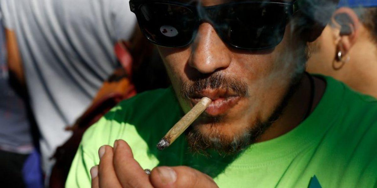 Chile se eleva al tercer lugar en consumo de marihuana en América
