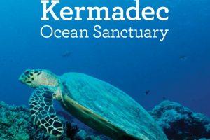 También hay más 250 especies de coral. Foto:Vía http://mfe.govt.nz. Imagen Por: