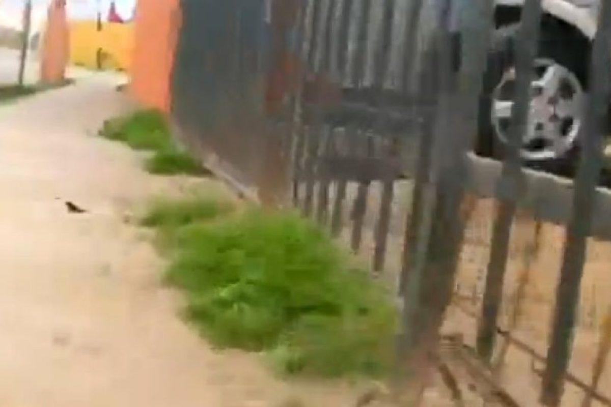 La zona donde ocurrió el ataque Foto:Reproducción / Canal 24 Horas. Imagen Por: