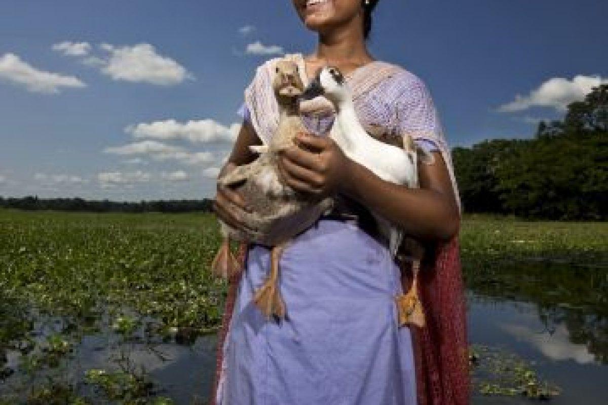 """El más importante es Kamadhenu, que significa """"Otorgadora de deseos"""" Foto:Getty Images. Imagen Por:"""