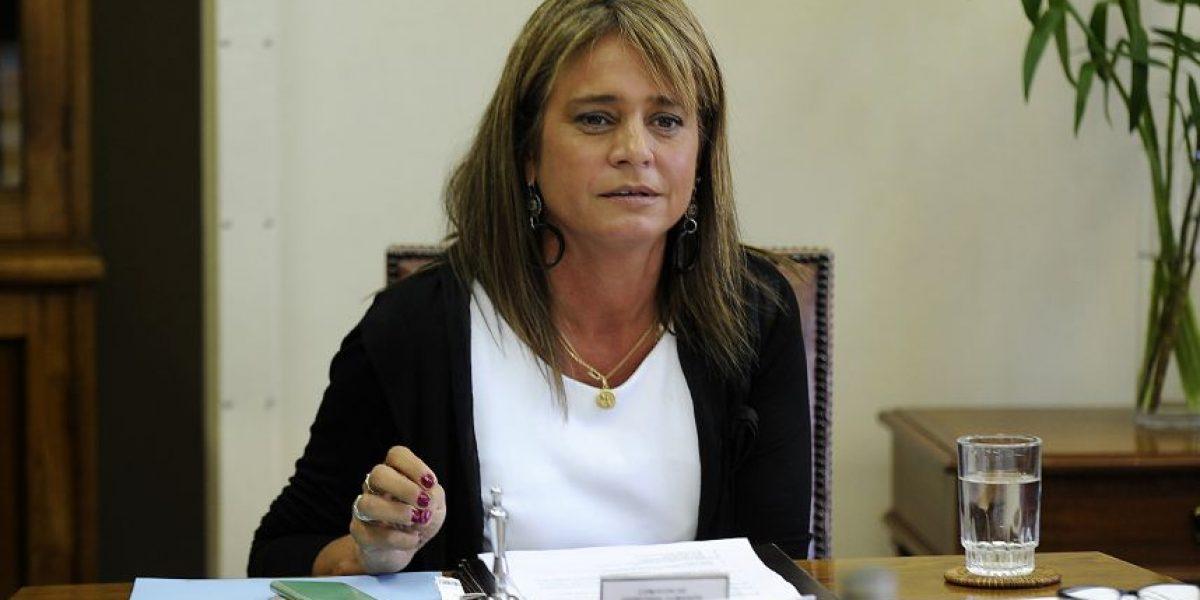 Van Rysselberghe llegará al Tribunal Constitucional por Ley de Identidad de Género