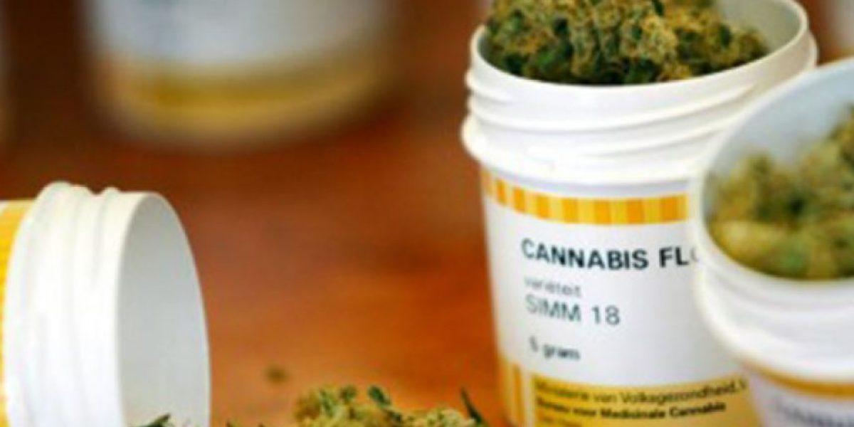 Croacia legaliza a partir de hoy cannabis para fines medicinales