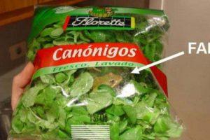 Otro sapo. Foto:vía EpicFail.com. Imagen Por: