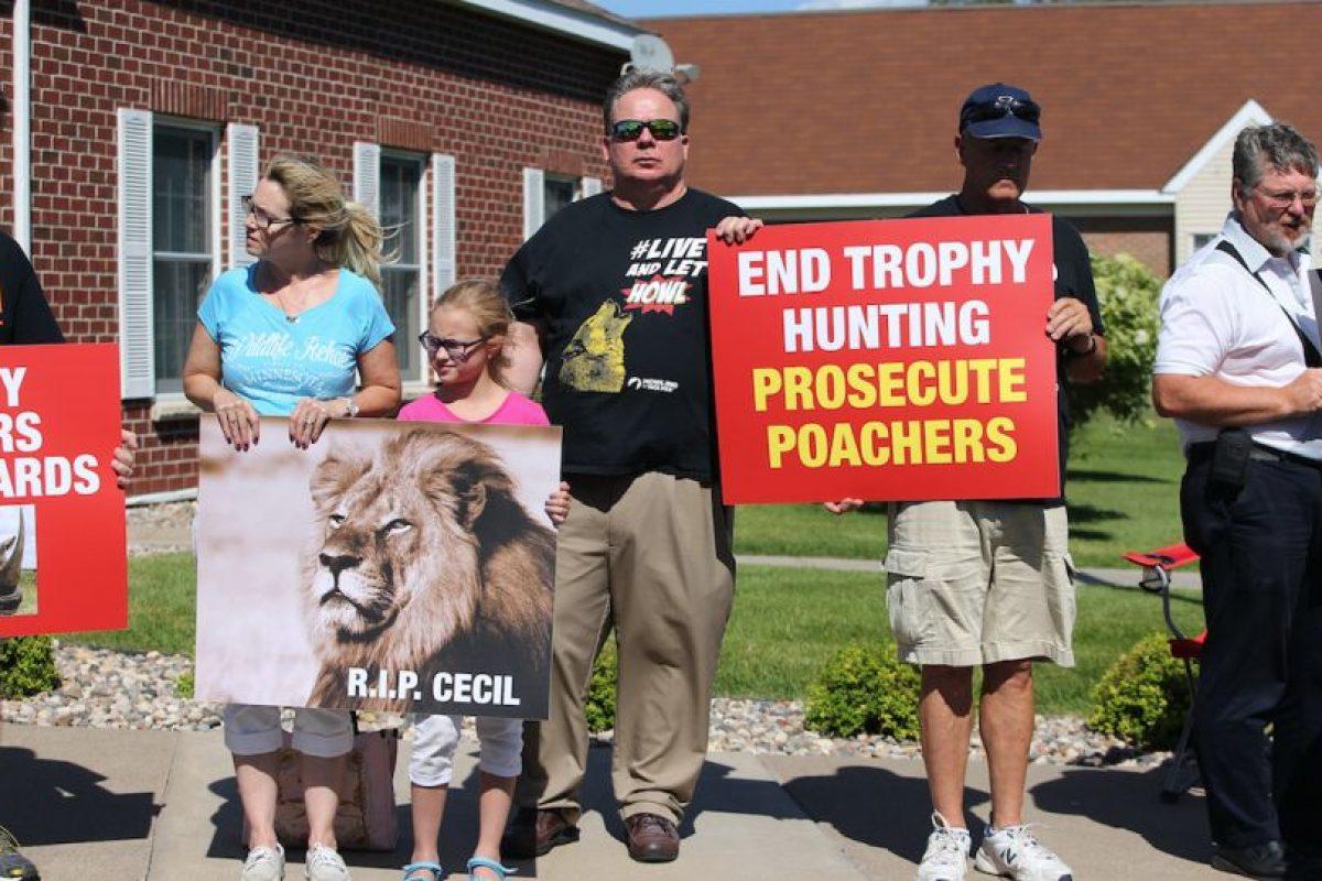 Protestas por la muerte de Cecil en Minnesota, hogar del cazador del famoso león de Zimbabue. Foto:Getty. Imagen Por:
