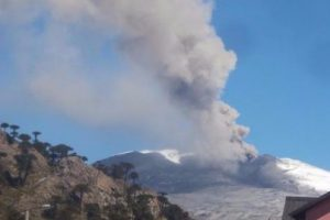 Foto:Twitter Red de Emergencia. Imagen Por: