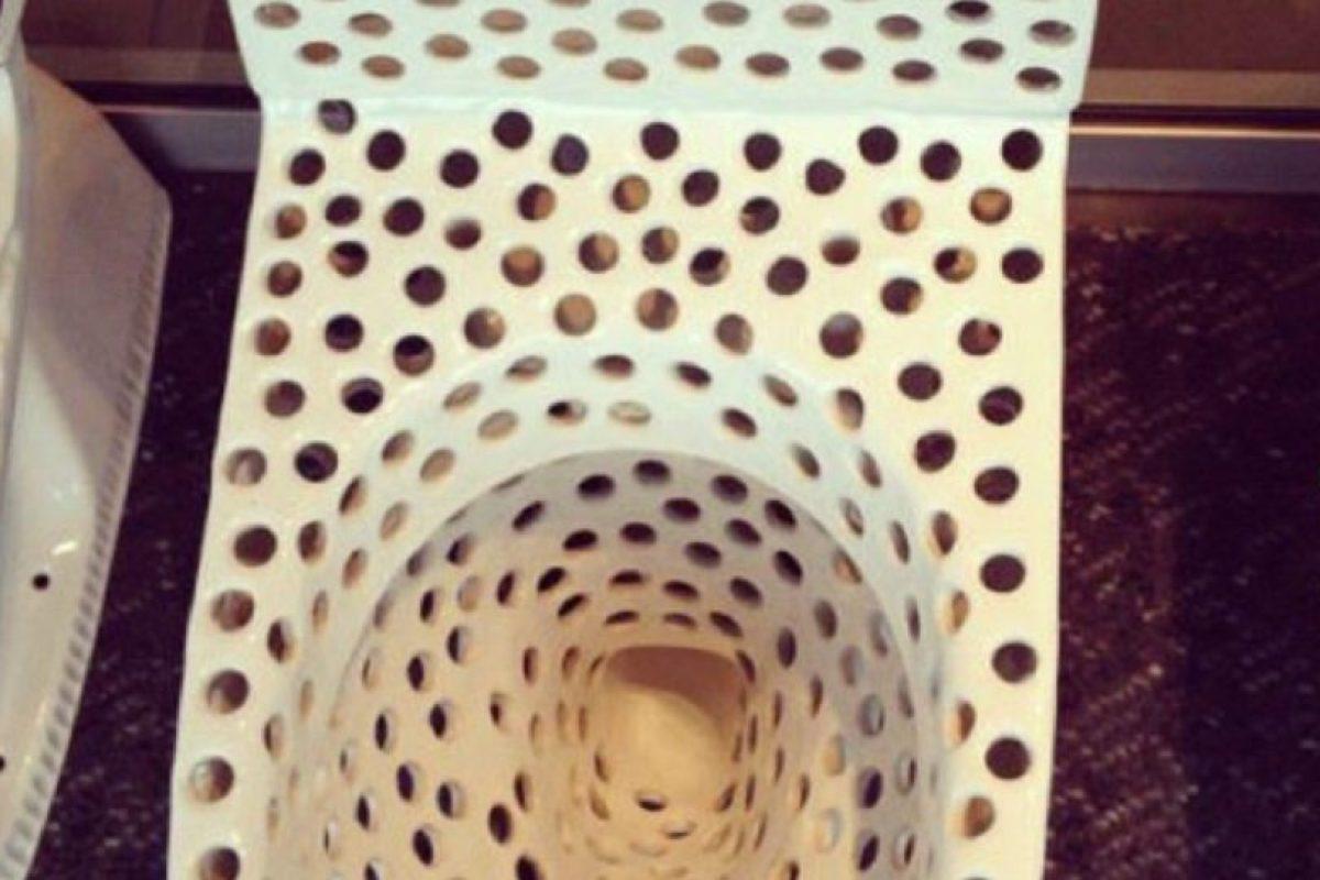 Según el sitio Tripofobia.com, esto sería un mecanismo de defensa. Foto:vía Tripofobia.com. Imagen Por: