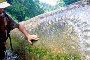 1. Selva de La Mosquitia en Honduras Foto:Twitter.com. Imagen Por: