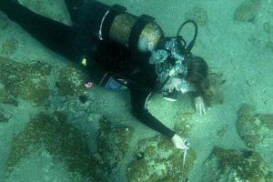 2. Descubren ciudad bajo el mar de cuatro mil 500 años de antigüedad Foto:Twitter.com/_Hexapolis. Imagen Por: