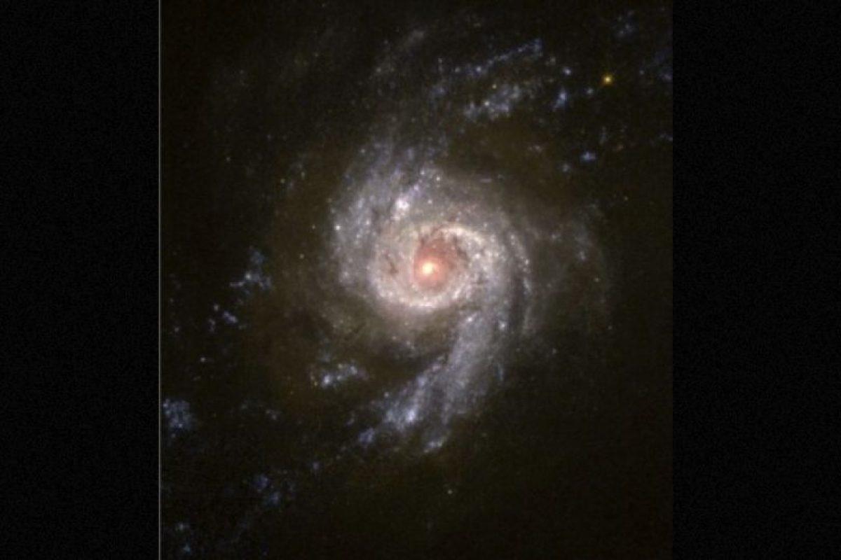 5. Los intentos del Instituto SETI Foto:Getty Images. Imagen Por: