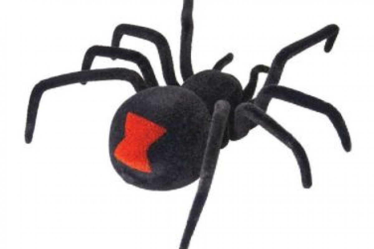 Es una araña controlada de forma remota puede escurrirse hacia adelante, hacia atrás, y en círculos y, sin duda, aportará diversión a su fiesta. Foto:Amazon. Imagen Por: