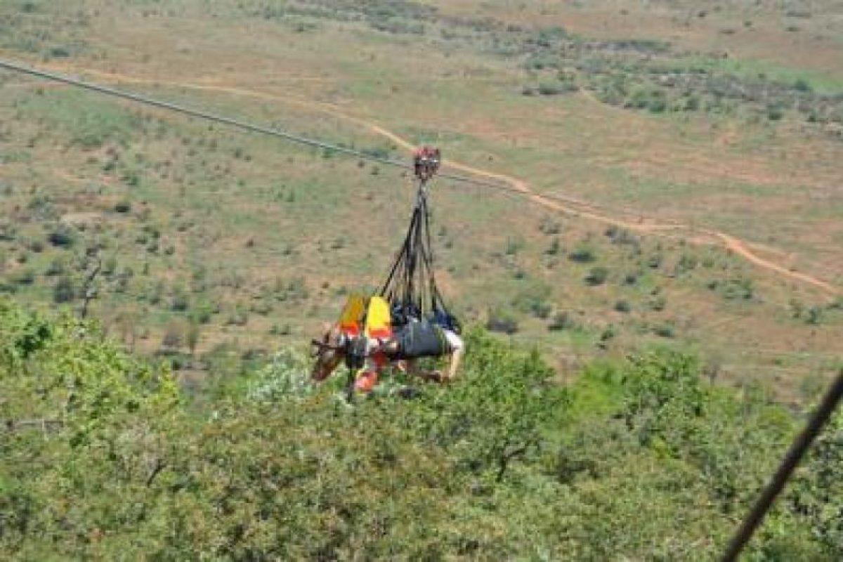 Se autodenomina el más largo del mundo Foto:zip2000.com. Imagen Por: