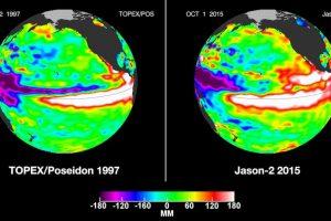Los científicos han descubierto que El Niño afecta año a año las temporadas de incendios en el oeste de Estados Unidos, el Amazonas e Indonesia. Foto:AP. Imagen Por: