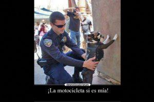 Foto:Vía Desmotivacion.es. Imagen Por: