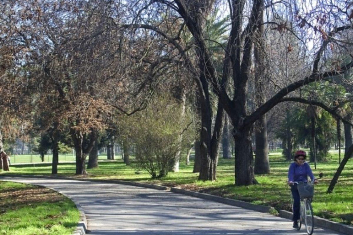 De qué comuna es el Parque Quintar Normal. El parque Quinta Normal es uno de los pulmones verdes más importantes de la Región Metropolitana y si bien se instala y da nombre a la comuna, el espacio pertenece a los santiaguinos. Eso sí, solo por un tema presupuestario. Foto:Reproducción. Imagen Por: