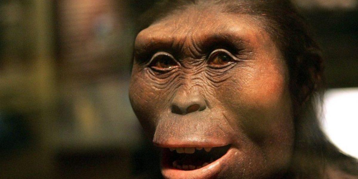 Así lucirán los humanos en mil años, de acuerdo a científicos