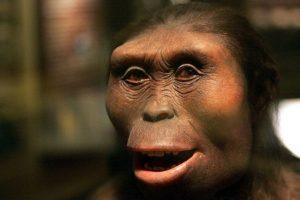 De acuerdo con los científicos la evolución será mucho mayor que la de hasta ahora. Foto:Getty Images. Imagen Por: