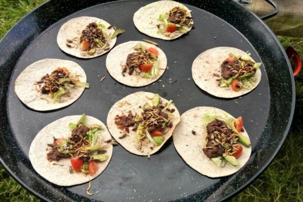 Burritos de insectos: limón, trigo, cilantro, frijoles picantes, grillos, chapulines, salsa de tomate y guacamole. Foto:Vía Twitter @grub_kitchen. Imagen Por:
