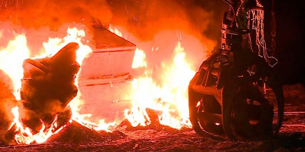 Investigan ataque incendiario y robo de animales en La Araucanía