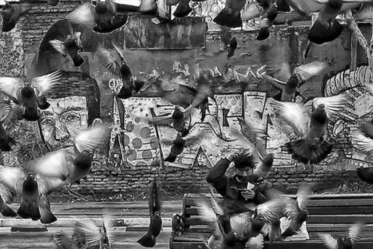 País: Chile / Categoría: Secretos de la Ciudad Foto:Natalia Cea Saldias. Imagen Por: