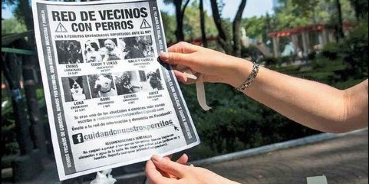 México: abuelita es la principal sospechosa de ser la