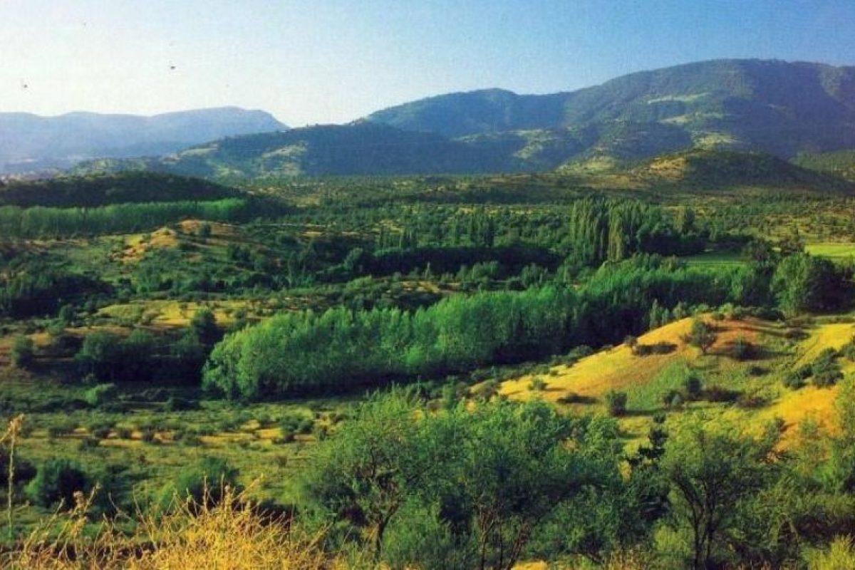 Vista de La Dehesa, comuna de Las Condes en 1983. Foto:Fotos Históricas de Chile. Imagen Por: