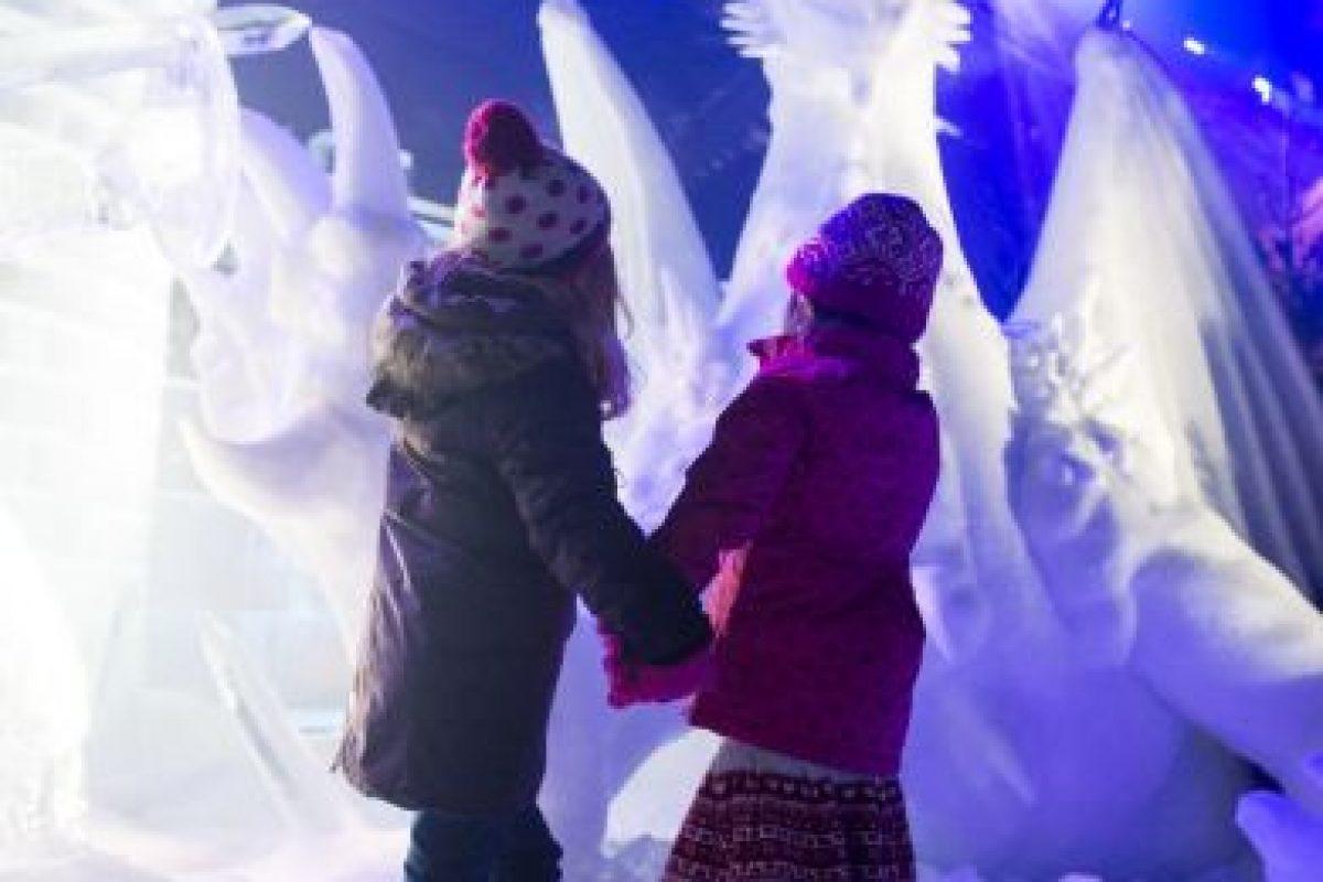 Existen diversos festivales donde se les puede admirar alrededor del mundo Foto:Getty Images. Imagen Por: