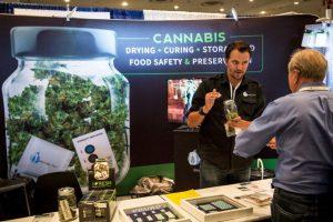 """""""La planta de Marihuana no es medicinal y está compuesta por más de 400 componentes, que sin purificar tienen un efecto tóxco para el cerebro"""", explicó Arnaldo Cruz, presidente del comité Foto:Getty Images. Imagen Por:"""