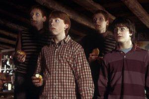 """""""Animales Fantásticos y Dónde Encontrarlos"""" marcará el debut de J.K. Rowling como guionista. Foto:Vía facebook.com/harrypottermovies. Imagen Por:"""