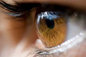 1. Ojos amarillos Foto:Pixabay. Imagen Por: