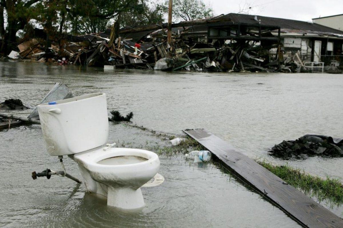 Con el que se podrían traer beneficios para la salud y medio ambiente en todo el mundo. Foto:Getty Images. Imagen Por: